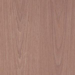Καρυδιά ALPI 68 Φαρδύβενη